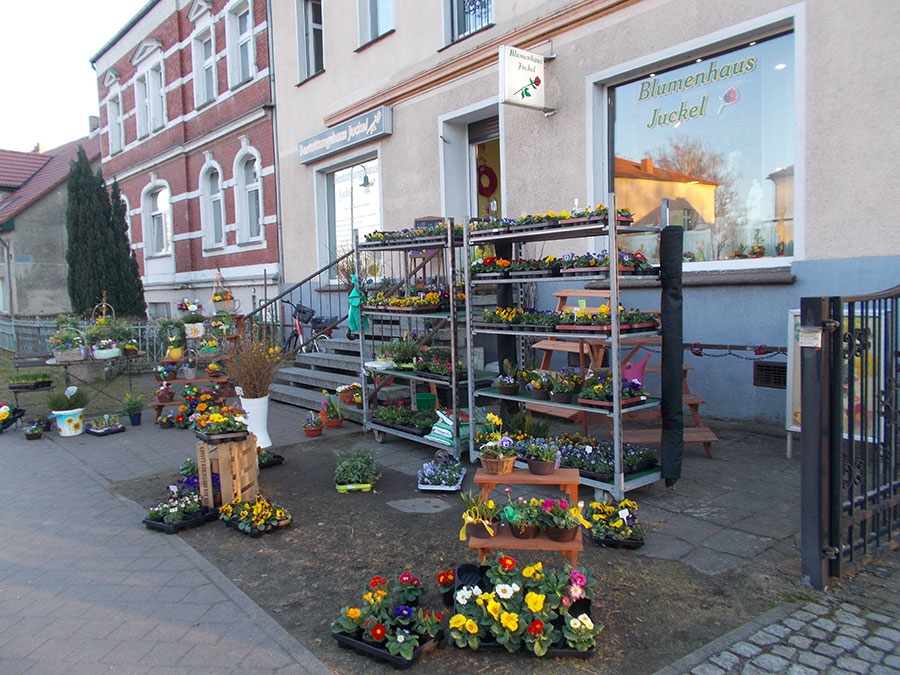 Blumenhaus Juckel Floristik Berlin